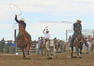 Photo by Jamie Rieger- Josh Harden (from Big Valley)  and Jeremy Harden (from Castor), scored a No-time in this attempt in the team roping event.