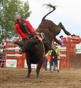 Photo by Jamie Rieger- Despite having a great ride, Quade Hughson couldn not quite make it to the bell in Steer riding on Saturday afternoon.
