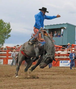 Photo by Jamie Rieger- Tim Costello, from Byemoor, scored a 73-point ride on Blueberry in Foremost rodeo action on Saturday.